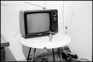 "Serie ""Ashes"", ""TV"", Marc Casal"